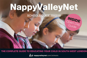 NappyValleyNet School Guide