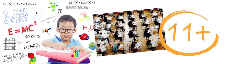 Surviving the 11plus exam preparation
