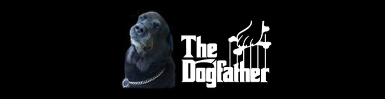 Dogfatherly advice