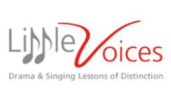 Top LAMDA Exam Success for Little Voices' pupils