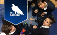 Falcons School for Girls Engage in STEM Subjects
