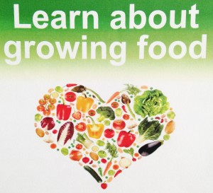 Learn About Growing Your Own Food - locally in Balham @ St Mark's United Reformed Church | London | United Kingdom